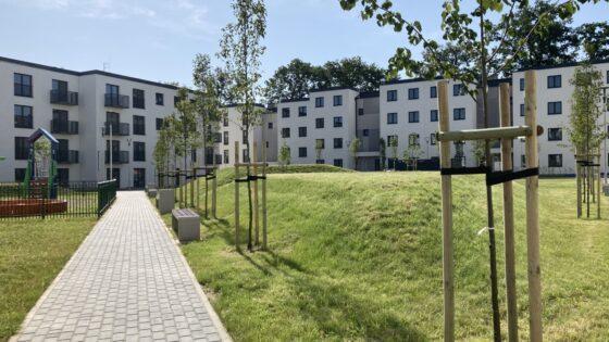 Cyfrowy system wyboru mieszkań